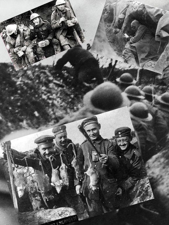 Year 4 WW1