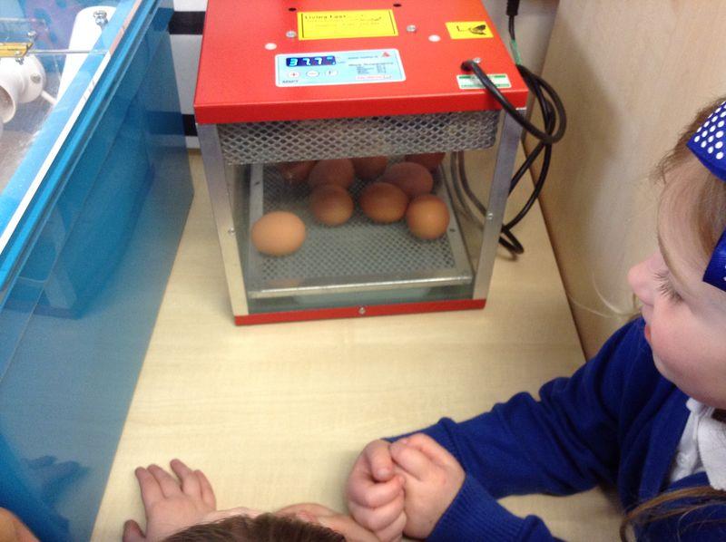 Reception eggs 2
