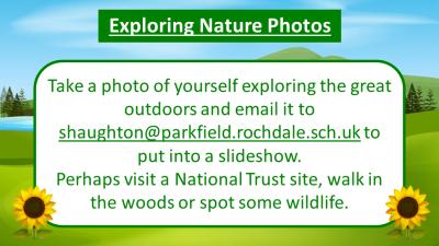 Exploring nature photos